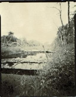 Greenpoint, Maine. 4 x 5 Pinhole photograph. Harman Direct Positive Paper