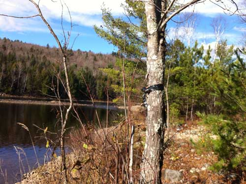 kennebec river photo project maine