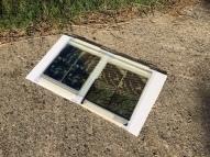 cyanotypes, artist, maine